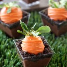 Carrot Patch Dirt Pudding Cups