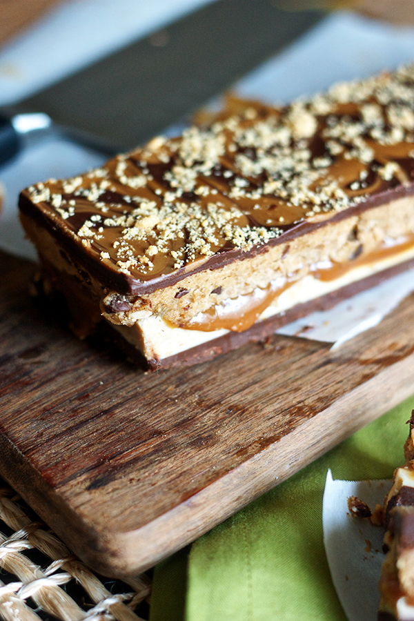Chocolate Cookie Butter Cookie Dough Bars 7922 copy