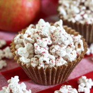 Apple Spice Popcorn 13060 copy
